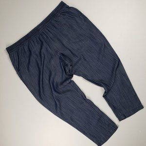 Cold Water Creek Blue Jogger Pants Size 2XL